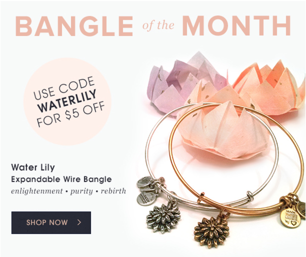 Alex And Ani S March Bangle Of The Month