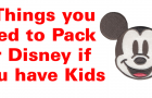8 Things You Need to Pack for Disney if you have Kids
