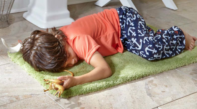 TRUSOFT by STAINMASTER Carpet
