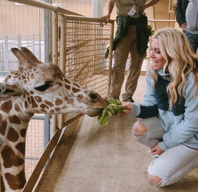 Feeding Giraffes at the Omaha Zoo